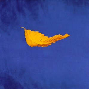 New Order - True Faith album cover