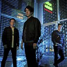 The Wombats 2015