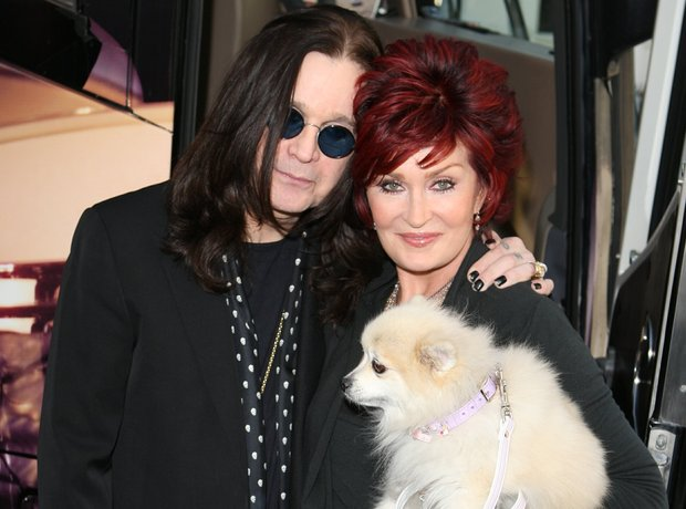 Rock Stars With Dogs